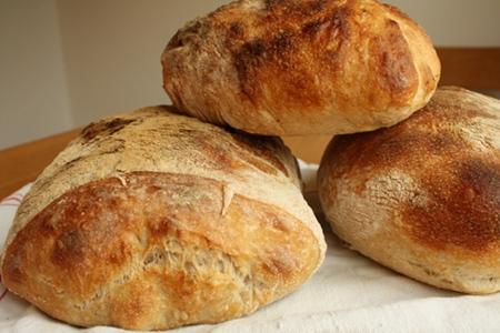 Många goda bröd